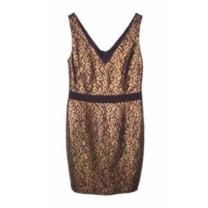 NWT Trina Turk Cocktail Dress Lace Gold Black 10
